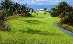 Peter Ellenshaw Mauna Kea 11th Hole
