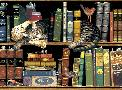 Charles Wysocki Max in the Stacks