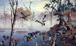 Harry Curieux Adamson Morning At Ghost Lake Mallards