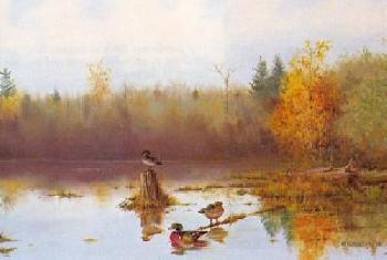 Owen Gromme Morning Haze - Wood Ducks Artist