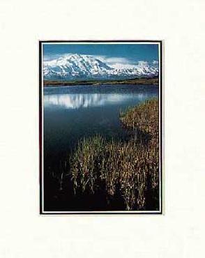 Ansel Adams Mount McKinley, Grass SM Matted
