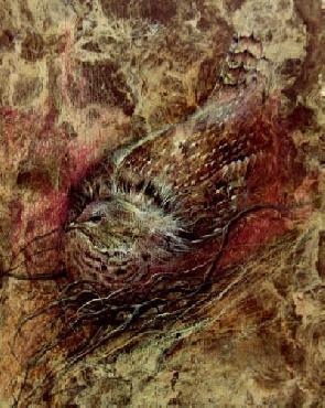 Lee Bogle Nesting Grouse Giclee on Paper