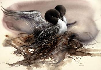 Lee Bogle Nesting Loons Giclee on Paper