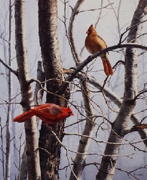 David Maass New Day Cardinals Artist
