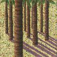 Bernbaum Oasis 5 Canvas