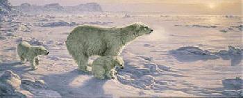 Lee Kromschroeder On the Edge - Polar Bears