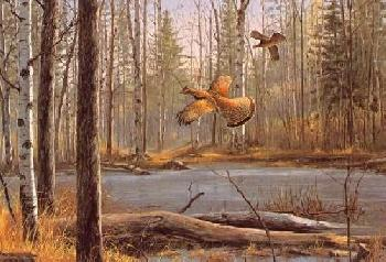 David Maass Over the Pond - Ruffed Grouse Remarque