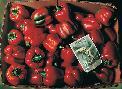 Bob Byerley Peppers