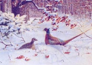 Owen Gromme Pheasants Artist