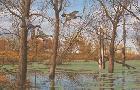 David Maass Placid Backwaters Wood Ducks