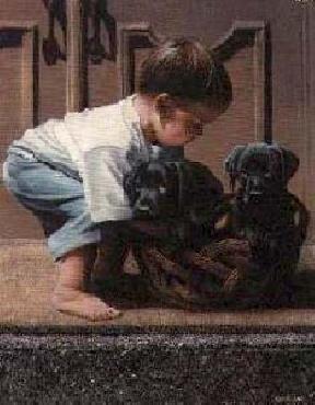 Kevin Daniel Puppy Love II