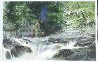 Nita Engle Rainbow Falls