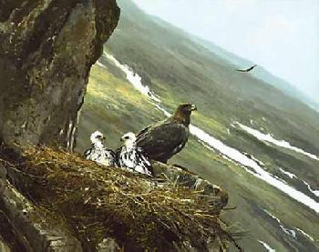 Michael Coleman Regal View - Golden Eagle Watercolor Paper