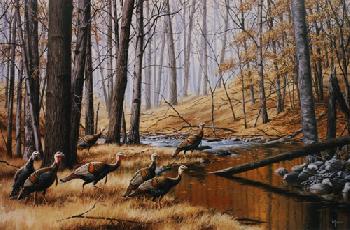 David Maass Return To the Hardwoods Wild Turkey Artist