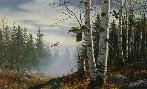 David Maass Ridgeline - Ruffed Grouse