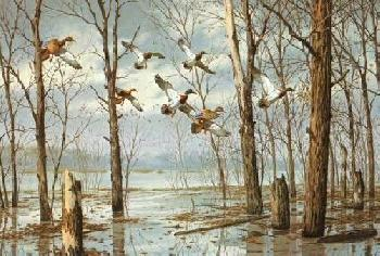 David Maass River
