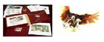 Bev Doolittle Rushing War Eagle WSS From Where Silence Speaks Set 1986