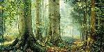 Greg Olsen Sacred Grove