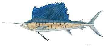Flick Ford Sailfish Signed Open Edition Giclee on Paper