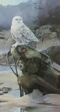 Mario Fernandez Sea Maiden