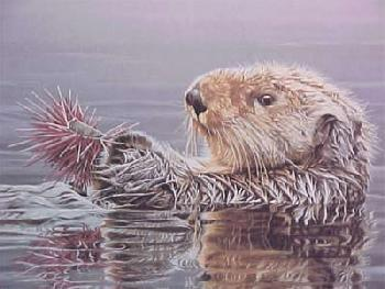 Ron Parker Sea Otter with Sea Urchin