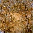 Chrzanowski Season of Change Artaissance Giclee on Canvas
