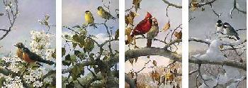 Mario Fernandez Seasons Set of Four