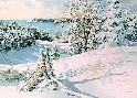 Charles Peterson Sledding Hill