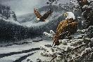 Rosemary Millette Spirit of the Wild - Bald Eagle