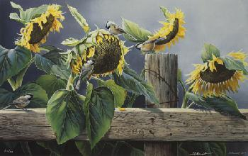 Susan Bourdet Summer Banquet - Chickadees
