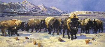 Terry Lee Teton Bison Giclee on Canvas