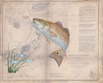 Patty Pendergast Texas Redfish Map Open Edition Giclee on Canvas