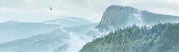 Robert Bateman Thinking Like a Mountain Giclee on Canvas