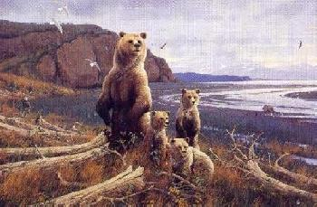 Michael Sieve Tidal Flats - Brown Bears Artist