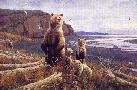 Michael Sieve Tidal Flats - Brown Bears