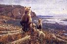 Michael Sieve Tidal Flats - Brown Bears