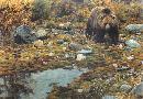 Carl Brenders Trailblazer - Grizzly Bear