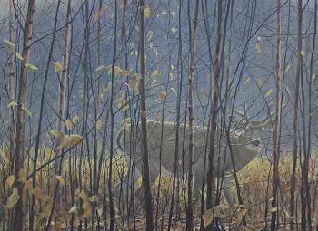 Robert Bateman Whitetailed Deer Through the Birches