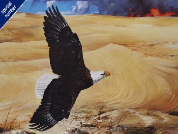 Mario Fernandez Wings Over the Desert Print #1/2500