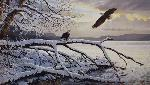 Persis Clayton Weirs Winter Majesty - Bald Eagles