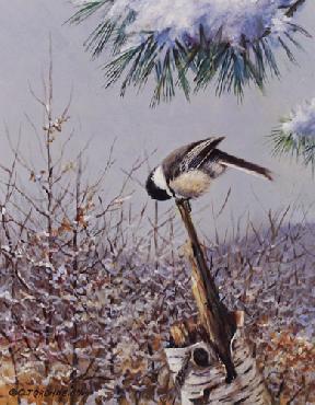 Owen Gromme Wintertime Favorite - Chickadee Artist