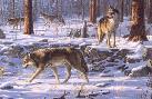 Jim Hautman Wolf Pack