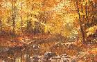 Robert Abbett Wood Ducks