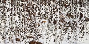 Bev Doolittle Woodland Encounter