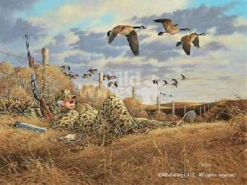 John Wilson You Snooze, You Lose - Canada Geese Signed Open Edition on Paper
