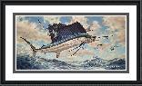 Don Ray Airborne - Sailfish