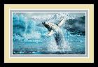 Michael Sieve White Thunder - Humpback Whales