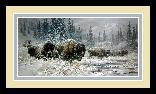 Larry Fanning Front Range Storm Colorado Buffalo